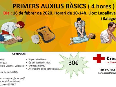 CURS DE PRIMERS AUXILIS BÀSICS A BALAGUER