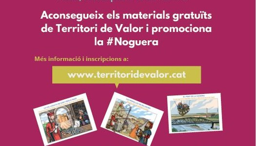 TERRITORI DE VALOR, ADREÇAT A EMPRESES DEL SECTOR TURÍSTIC DE LA NOGUERA.